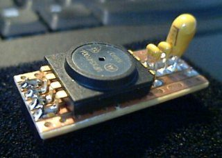 Radio Controlled Modeling - RC Circuits